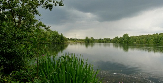 Sandwell Valley Park Forge Lake (19)