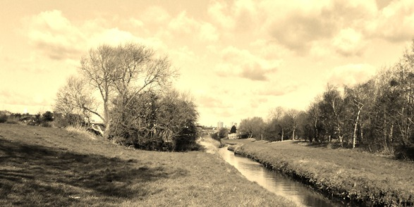 River Tame Sepia