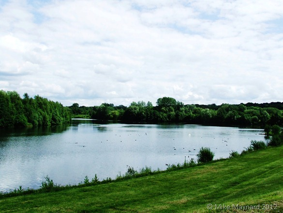 Sandwell Valley and Milky 020
