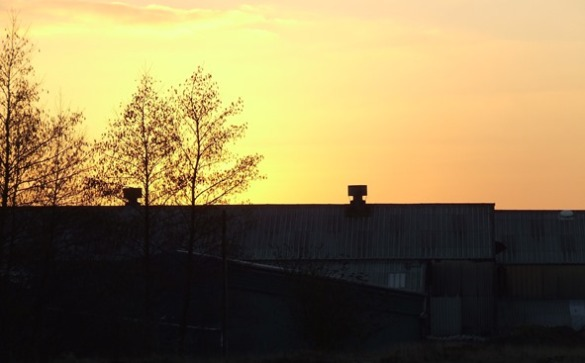 A factory sunset
