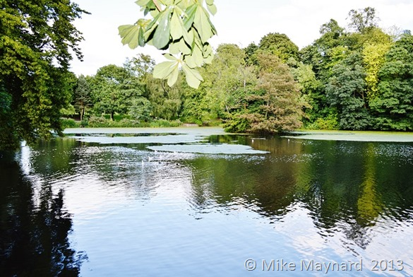 Redhouse Park pool