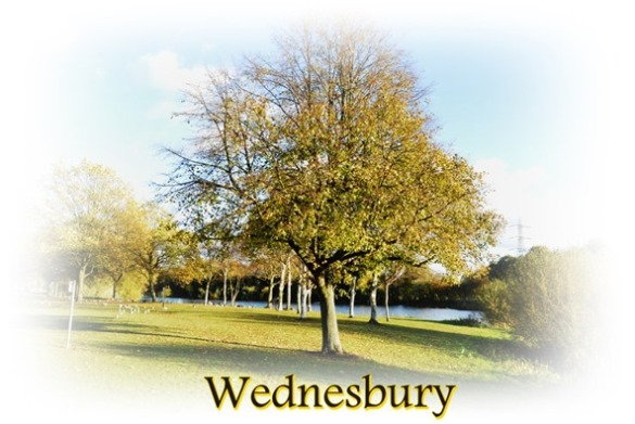a tree in wednesbury
