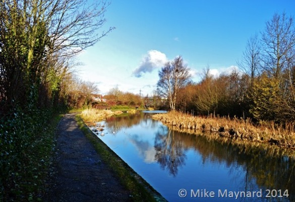 1 Walsall Canal - winter sunshine