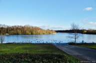 Forge Mill Lake -Sandwell Valley