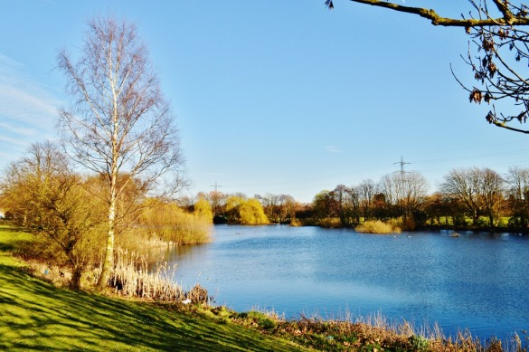 Woden Lake, Wednesbury