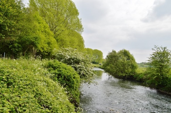 1 1 The River Tame
