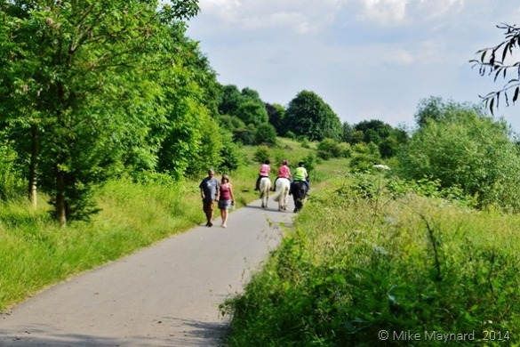 Sandwell Valley Country Park bridle way