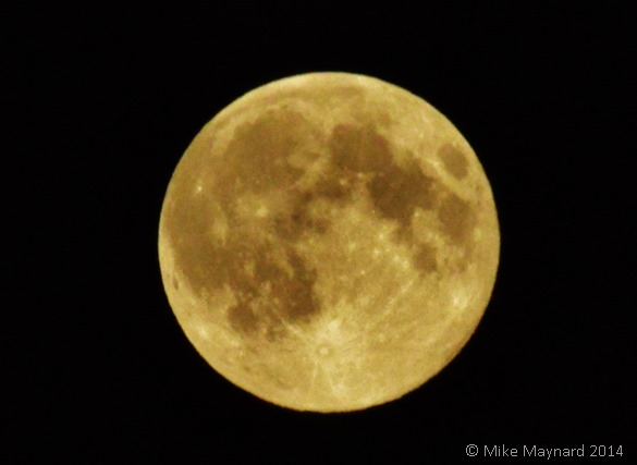 Supermoon Aug 2014